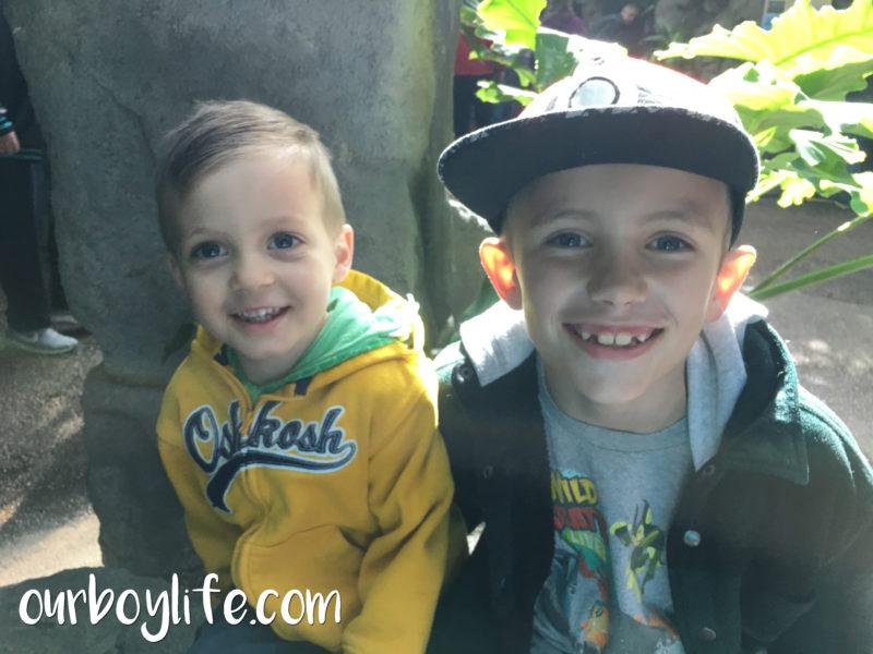 Our Boy Life - Denver Zoo - Spring Break With Boys